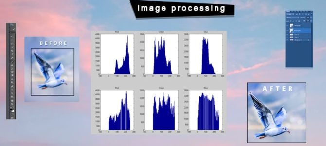 7 Tactics to Outsource Image Processing Service in Business